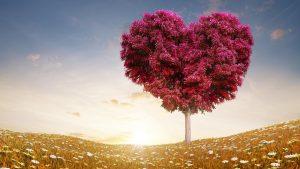 Τρόποι έλξης της αγάπης