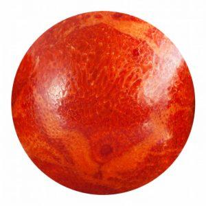 Κόκκινο Κοράλλι