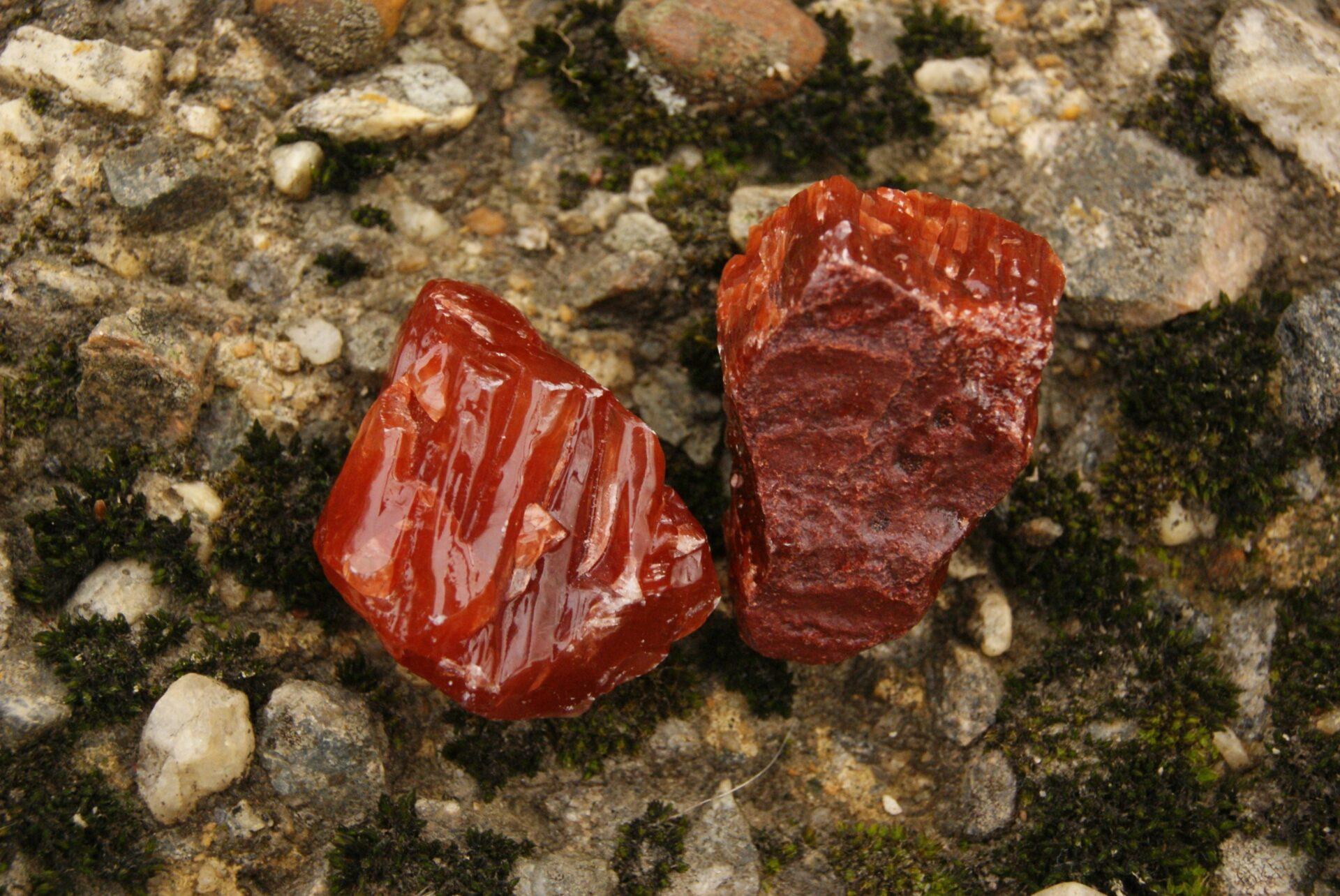 Καλσίτης Κόκκινος