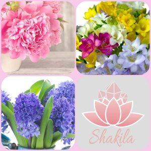 Τα λουλούδια της Άνοιξης!